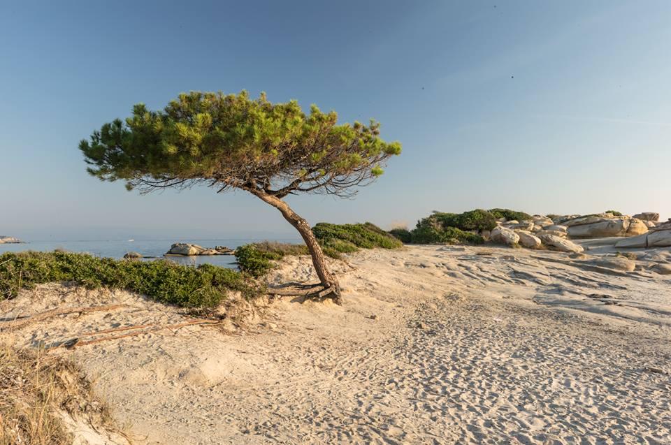 Calcidica-spiagge-2