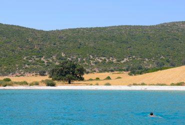 In Barca a vela per nuotare da soli in una Baia Deserta… Gallery per voi