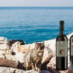 9 Giugno, Milano, Degustazione Vino Greco da Hellinikon!