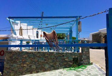 5 motivi per cui non sono pentita di essere stata in Grecia!